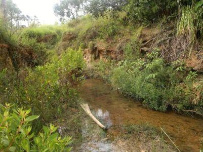 A área onde será instalado o aterro sanitário é rica em córregos.