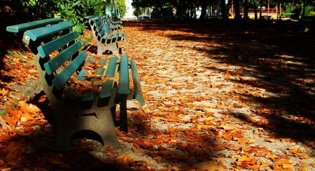 Parque Tabord, Rennes, França. Foto: Chico Sant'Anna