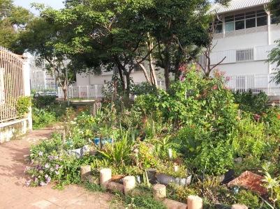Jardins do Guará (2)