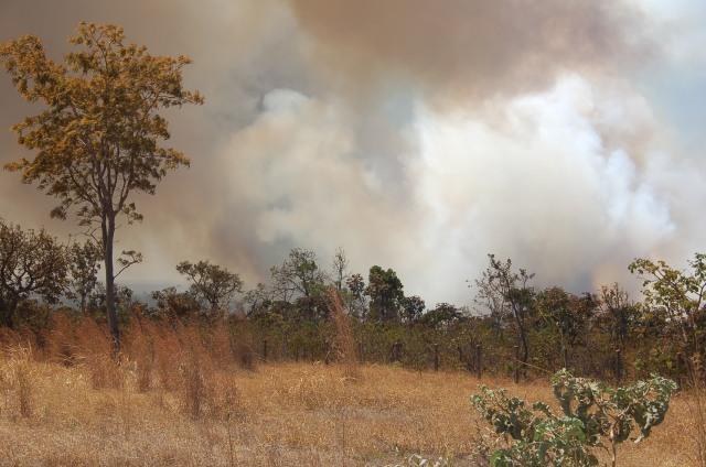 Incêndio Parque Córrego da Onça 4-9-2011 (2)