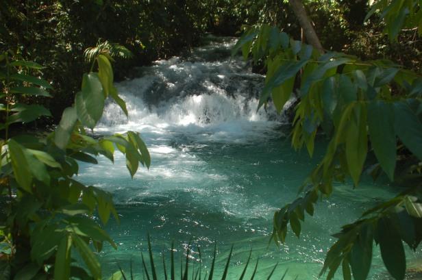 Nascente no Jalapão - Tocantins (2009). Foto de Chico Sant'Anna