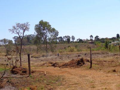 Fotos retirada vegetação inicio da invasão da 28