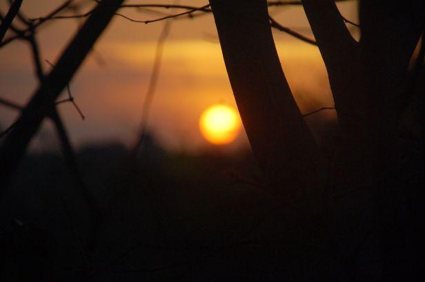 Alcântara Por do sol dez 2013 (133)