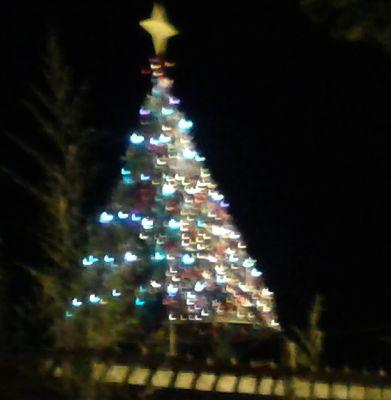 árvore de natal noturna