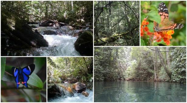 Córrego Seco montagem