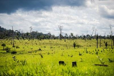 MC_Colniza_Foto_Marcelo_Camargo01103182016.jpg Área degradada no município de Colniza, Floresta Amazônica (Foto Marcelo Camargo/ Agência Brasil)