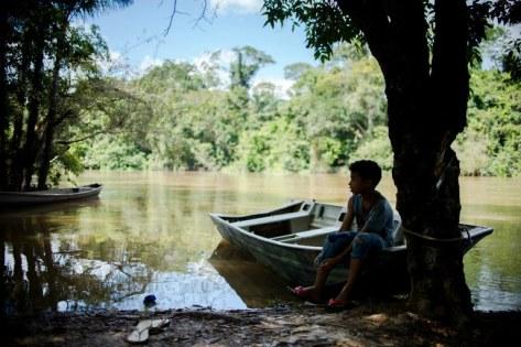 Reserva legal comunitária do assentamento Vale do Amanhecer, em Mato Grosso (Marcelo Camargo/ Agência Brasil)
