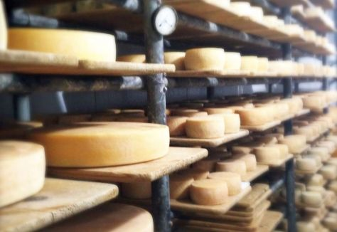cerrado-queijos